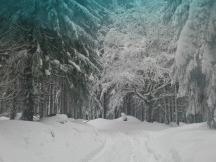 Krušné hory v únoru 2015